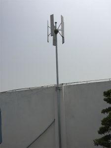 Prix de turbine de vent du générateur de turbine 100W