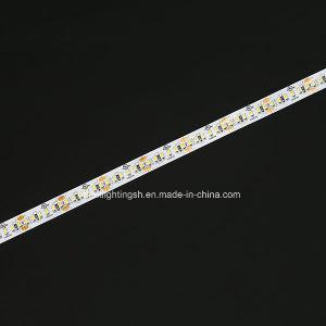 Indicatore luminoso di striscia di Osram 3014 19.2W 240LEDs 24V CRI80 3000K del Ce dell'UL LED