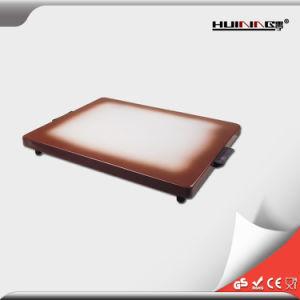 Bac de réchauffement électrique de plaque chauffante