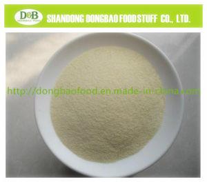 L'ail déshydraté Granule 40-80 mesh épices naturelles Les légumes déshydratés