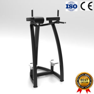 Ginocchia up/DIP della strumentazione di forma fisica di ginnastica di esercitazione con qualità eccellente