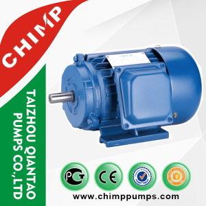 セリウムの公認Y2シリーズ3段階AC電気モーター