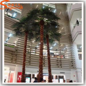 Las plantas de la decoración del hotel Washington Palmera Artificial árbol personalizado