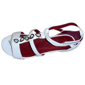 Mesdames chaussures, de la chaussure 2