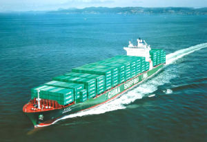 Verschiffen Agent (20gp/40gp/40hq) From China zu All Over The World, Sea Cargo (LCL, FCL), Logistics Service