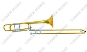 Trombones de diaphonie de réglage de tenor (TB81C-L)