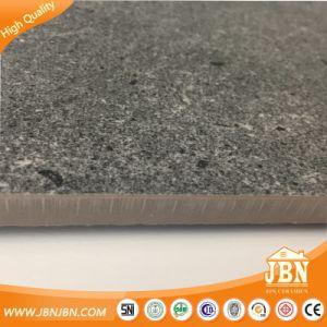 PORZELLAN-Fußboden-Fliese des grauen Tintenstrahl-3D Antides beleg-600X600mm keramische rustikale Matt(JX6610T)