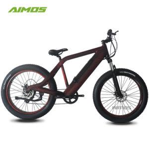Professional Ebike Factory y poderosas de la montaña de diseño de bicicleta eléctrica