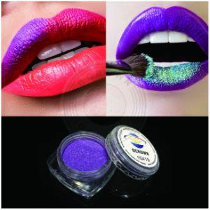 口紅、リップの光沢のための装飾的な等級の雲母粉の自然な顔料