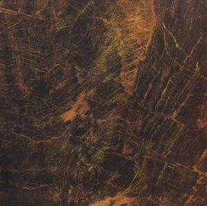 80*80 verglaasde de Opgepoetste Lijn van de Grens van de Tegel Fy6093q van het Porselein