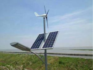 40W Vento luzes LED solares (SHJ-LD40)