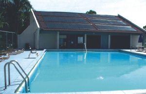 Pompa ad acqua senza spazzola della piscina di CC di alto flusso di acclamazioni Jp60