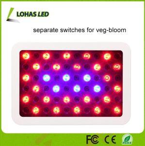 300W LED si sviluppano chiari per la fioritura idroponica della fioritura di Veg delle piante della serra dell'interno