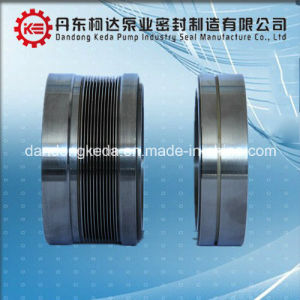 Guarnizione meccanica di acciaio inossidabile ad alta pressione dell'asta cilindrica