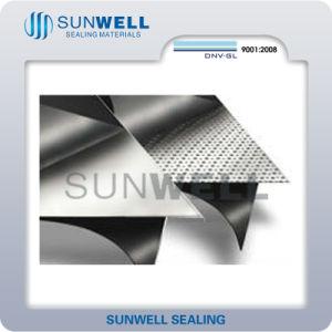 Graphitblatt verstärkt mit Metallfolie (SUNWELL)