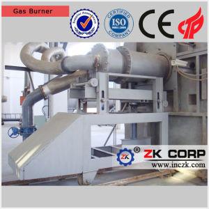 Bruciatore ad alimentazione mista con carbone e gas come combustibile