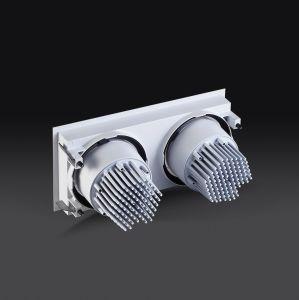 調節可能な高品質40Wの市民LED Dali Dimmalbeのグリル2ヘッドDownlight