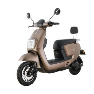 600W cyclomoteur puissant vélo électrique avec la pédale et du dossier (HQY)