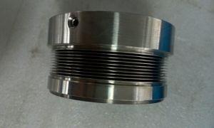 Mbs100 junta mecânica, Flexibox Durametallic,