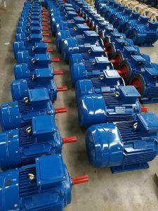 Motore elettrico di CA Ye3 di scoiattolo di induzione asincrona a tre fasi della gabbia per la pompa ad acqua, compressore d'aria