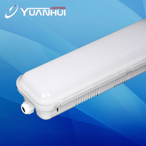 방수가 의 LED 선형 빛, 전등 설비, LED 펜던트 빛 온난한 백색 차가운 백색에 의하여 세 배 증거 빛 LED 수증기 증거 5 년 보장 22W 44W 56W LED 점화한다