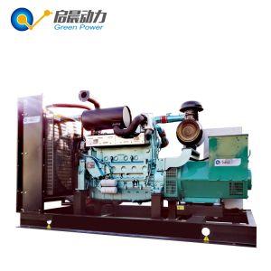 Generatori del gas di cogenerazione dei generatori del gas di CHP del biogas