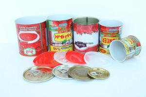 70g-5kg Conservas de Gino pasta de tomate