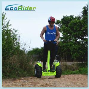 Напрямик скутер на распределение нагрузки автомобиля с помощью рукоятки 4000 Вт