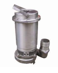 Versenkbare Pumpe S.-S. (Q (D) X)