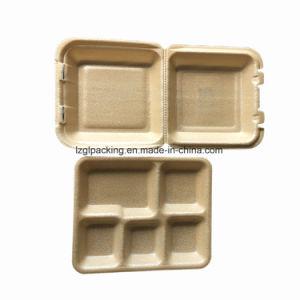8''x8''x3'' PLA espuma espuma descartáveis biodegradáveis Escola Alimentar Lunch Box
