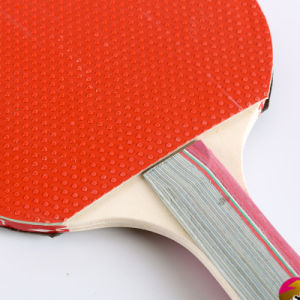 Alimentación fabricante profesional de raquetas de tenis de mesa ping pong con el mejor precio