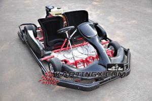 2 asientos estantería Kartings ir con el doble de las ruedas de la conducción Go Karts para los adultos