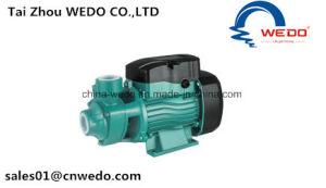 Surface intérieure de la pompe à eau électrique (0,75 KW/1 HP) QB80
