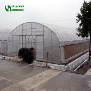 工場価格のセリウムによって証明される野菜トンネルの温室