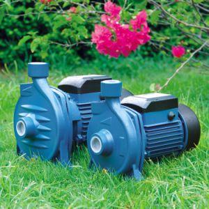 Nouveau design Elestar Centrifugual Pompe à eau (MH)
