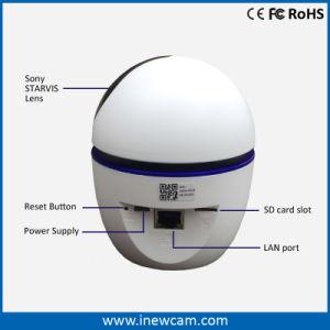 Nuevo blanco de 1080p de seguimiento automático de 360 grados cámara IP inalámbrica