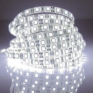 60 LED SMD2835 Gracia TIRA DE LEDS SMD (G-2835-60-12V-910)