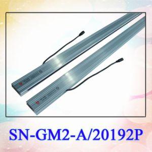 Infrarothöhenruder-Leuchte-Trennvorhang (SN-GM2-A20192P)