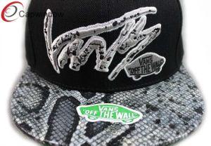 Equipado com chapéus de Beisebol Caminhoneiro Pac