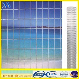Sellingのためのステンレス製のSteel Welded Wire Mesh Panel