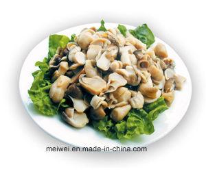 Fungo di paglia inscatolato fungo dell'alimento salutare