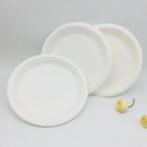 La bagasse compostables plaque ronde jetables pour l'alimentation 7 pouces