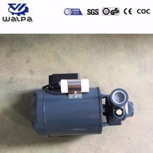 Krachtige Elektrisch van de Pomp van het water voor Lowara Stijl 0.5HP