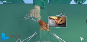 Tratamento cirúrgico da Cirurgia Animal Otohematoma Software de Sistema de treino de simulação virtual