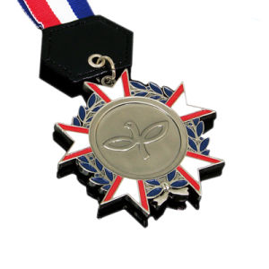 Förderung-Stuck Eisen-Dekoration-Medaillen-Medaillon mit kundenspezifischer Form (150)