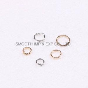 Gesp van de Tegenhanger van de Armband van de Ring van het Ijzer van de Juwelen van Oorringen DIY de Toebehoren Gesloten