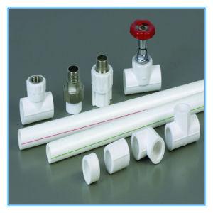 Roestvrije Steel Pijp, met Koppeling Casingpipe De Plastic Staaf van de Vervaardiging van China