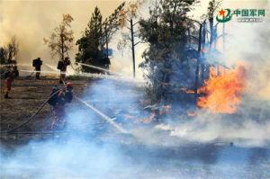 Veicolo aereo senza equipaggio di serie di prevenzione dell'incendio forestale del Uav