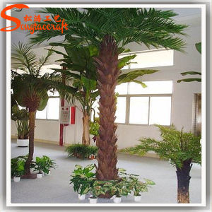 China Fornecedor de fibra de vidro artificial falsos Planta Palm Tree (FZHZ-08)
