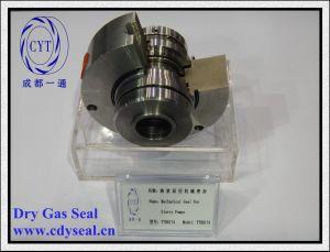 Guarnizione di gas asciutta in tandem della cartuccia della pompa (YTG 101-48)